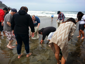 Photo: Digging for crabs!