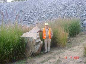 Photo: AUS-QU01  Vetiver grown in a stone quarry in Australia. So long as there is source of moisture for plant growth, and cracks for the roots to penetrate vetiver will grow.