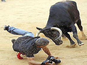 Photo: Reuters photographer Joseba Etxaburu is knocked down by a wild cow during festivities in the bullring following the sixth running of the bulls of the San Fermin festival in Pamplona July 12, 2012. Etxaburu suffered some scratches on his right elbow but was able to continue shooting afterwards.  REUTERS/Susana Vera (SPAIN - Tags: SOCIETY ANIMALS) TELETIPOS_CORREO:%%%,COSTUMBRES,%%%,FESTIVAL