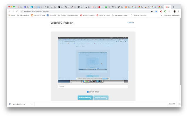 Ant Media Server Screen Share extension