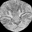 Tisza icon