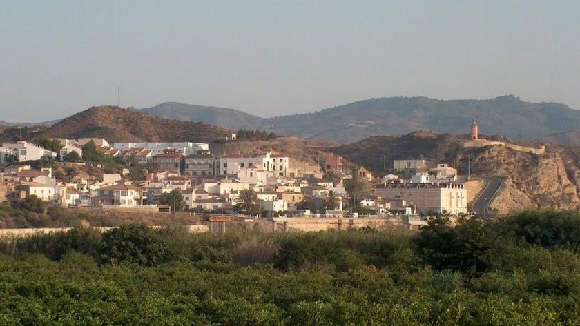 Vista general del municipio de Arboleas.