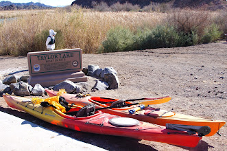 Photo: Launch site at backwater lake north of Picacho Camp. (R Miller.)