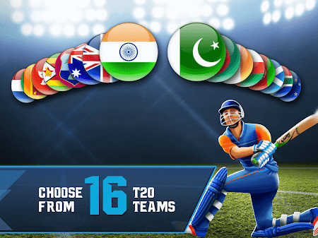 Cricket T20-Multiplayer Game 1.0.80 screenshot 2089456