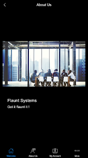 Flaunt Systems - náhled