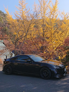 86 ZN6 GT--Limitedのカスタム事例画像 まさぽん(ハチレンジャー⊿)さんの2018年11月12日06:04の投稿