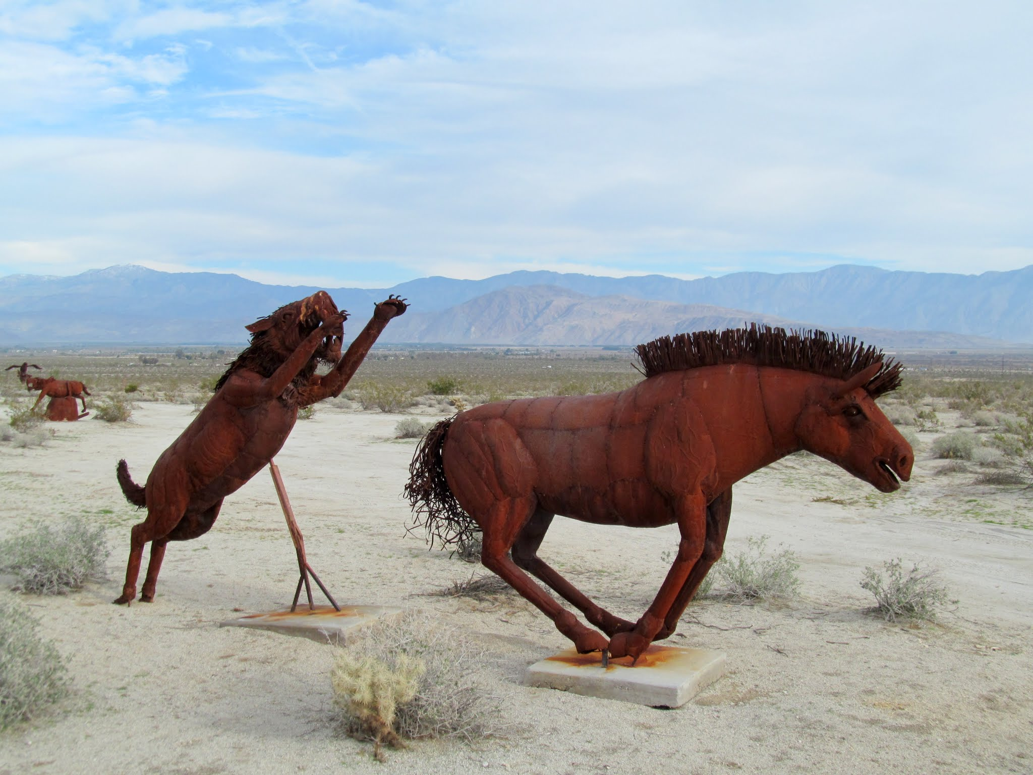 Photo: Saber-tooth chase