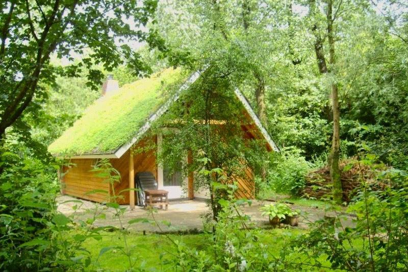 boshuisje-nederland