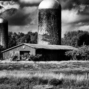 Barn 2 by Grady  Welch - Black & White Buildings & Architecture ( black & white, b&w, creek, barn, water )