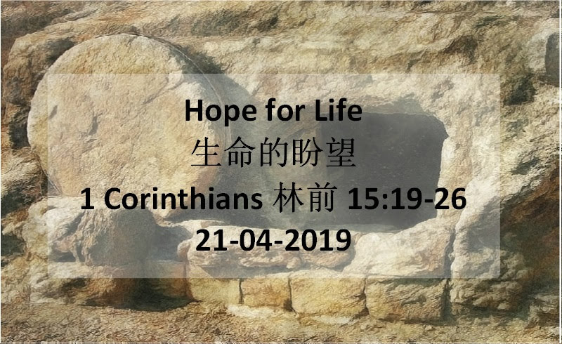 Hope for Life(生命的盼望)