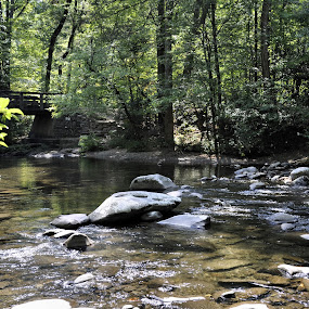 Peace by Linda Brooks - Landscapes Waterscapes ( serenity, tennessee, waterscape, landscape, peaceful )