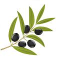 Osmanlıca Yaz icon