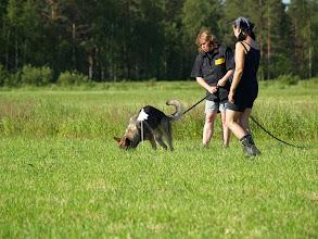 Photo: Lehtimäki peltojälki leiri -07