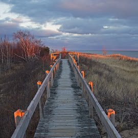 Pathway To the Lake by Bill Diller - Buildings & Architecture Public & Historical ( michigan, great lakes, calmness, lake huron, clouds, state park, boardwalk, tawas state park )