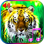 3D Animals Sounds & Wallpapers