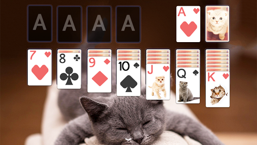 玩免費紙牌APP|下載Solitaire Cute Cats Theme app不用錢|硬是要APP