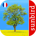 Arbre Id - Arbres de France icon