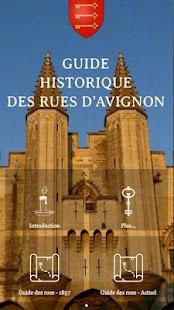 Avignon Guide Historique - náhled