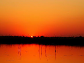 Photo: Coucher de soleil au Botswana sur le delta de l'Okavango