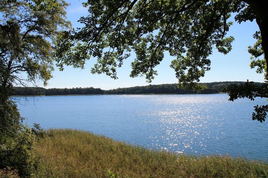 Jezioro Borzechowskie Wielkie