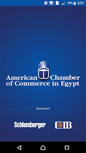 AmCham Egypt - náhled