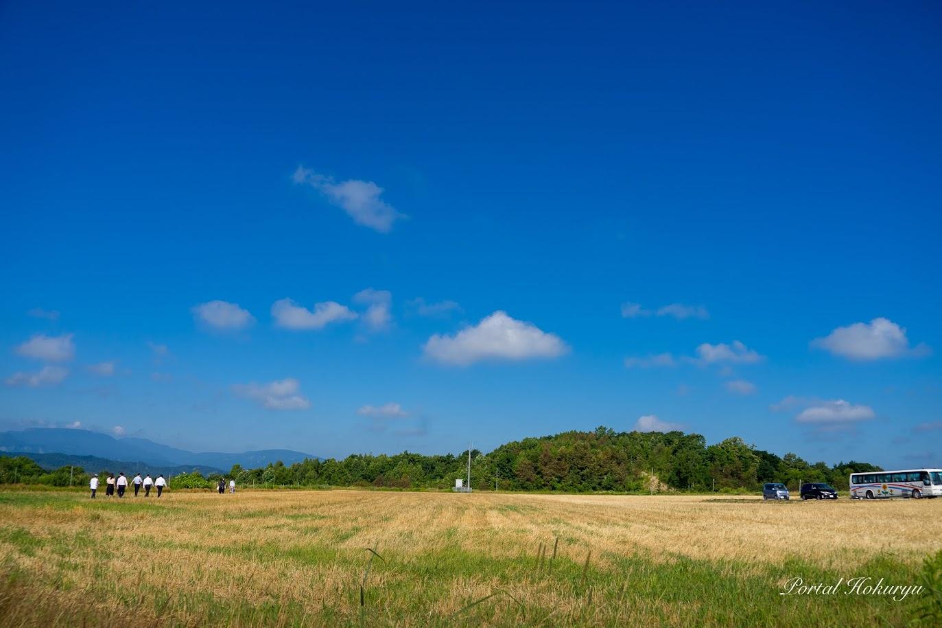 眺望の丘を一周