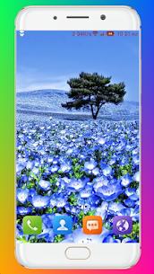Summer Wallpaper 1.08 MOD Apk Download 2