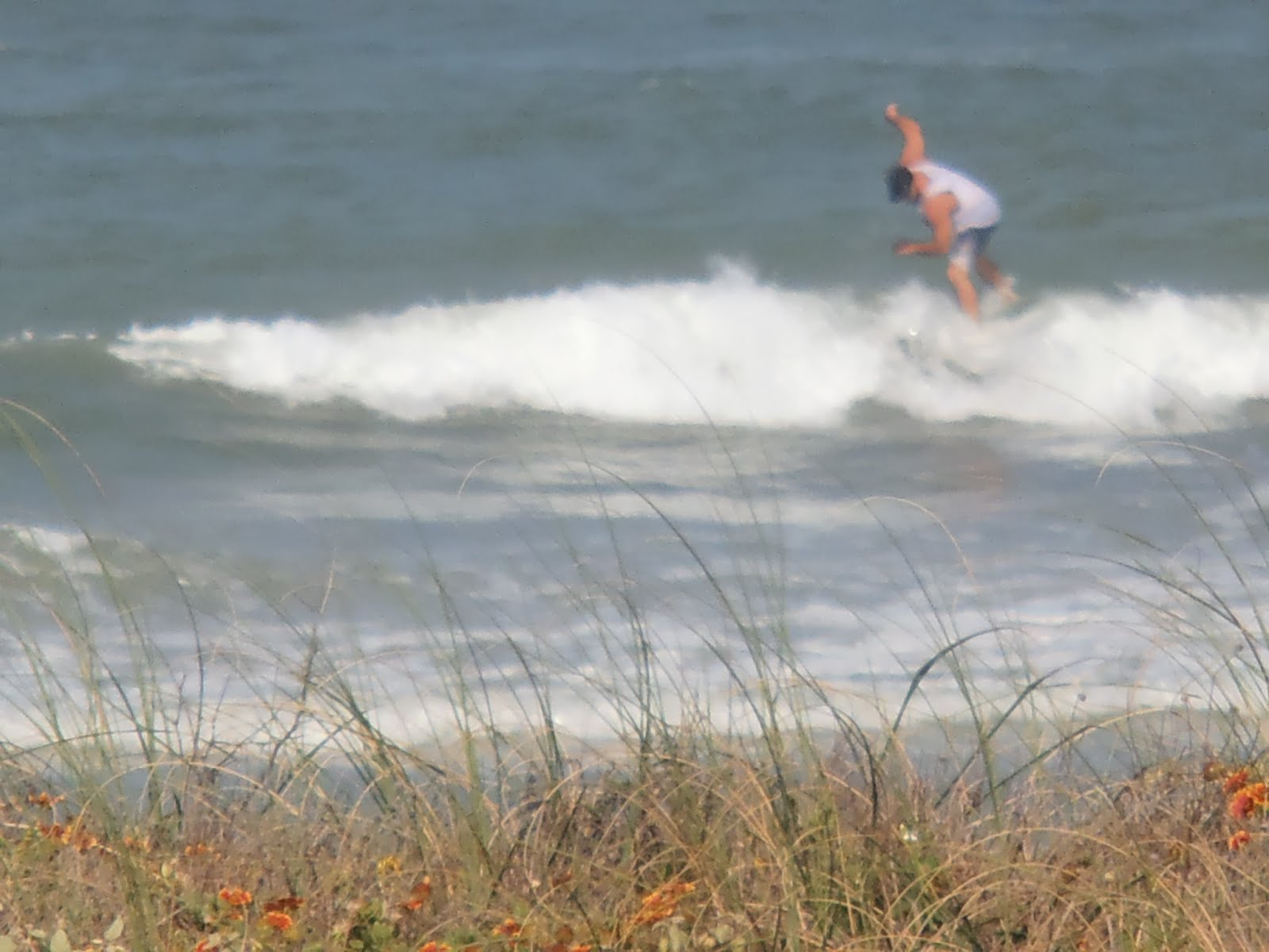 Surfer in Ormond By The Sea Florida