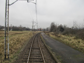 Photo: JG Celwiskoza