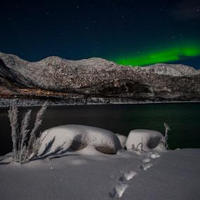 by Yvonne Reinholdtsen - Uncategorized All Uncategorized ( water, winter, aurora borealis, snow,  )