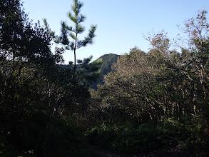 前方に向かう山頂