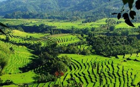 Ruteng, Nusa Tenggara Timur