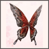 歳月の蝶翼