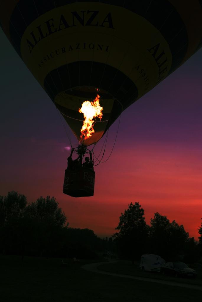 Fire fly di Zago