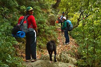 Photo: Very scenic Handi Forest