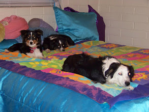 Photo: Layci, Jenny and Cowgirl ready for bed