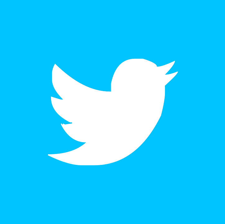 Twitter, Pin, Button, Icon, ...