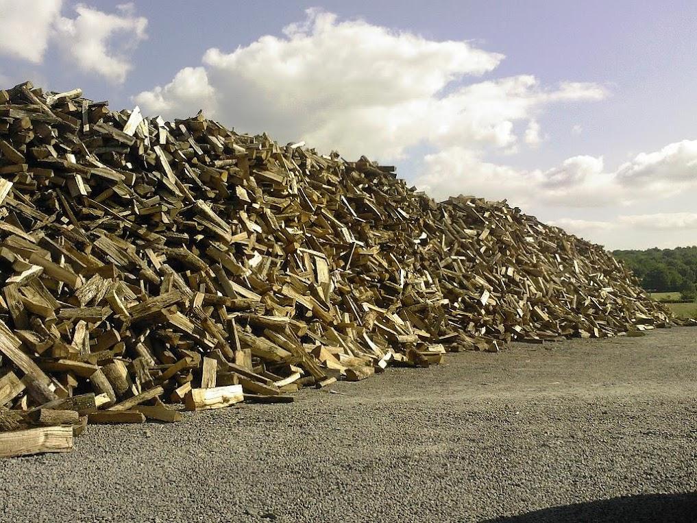 Pile de bois de chauffage en séchage pour les grossistes