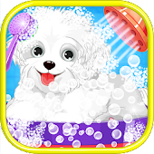 Puppy Salon - Pet Daycare