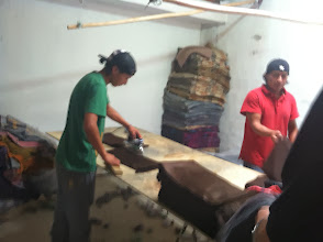 Photo: Outside Otavalo we visit a small manufacturer of alpaca blankets and scarves. Very low overhead by USA standards!