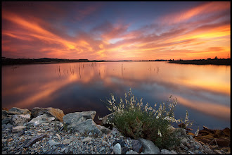 """Photo: """"The Call"""" 