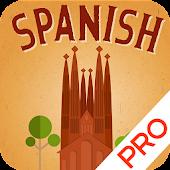 Spanish Flash Quiz (Ad-FREE)