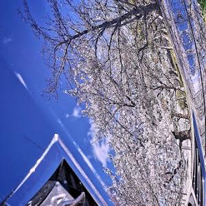 コルベット クーペ  C7  Z06のカスタム事例画像 Kさんの2020年04月15日06:30の投稿