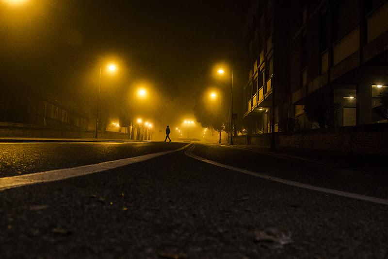 Nella Nebbia... di gattopisa
