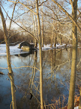 Photo: Bridge and trees reflected in a winter pond at Eastwood Park in Dayton, Ohio.