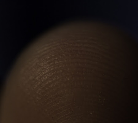 Impronte di ganesha