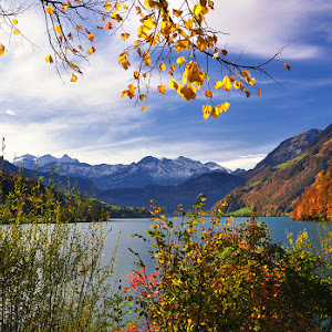 jesen.jpg