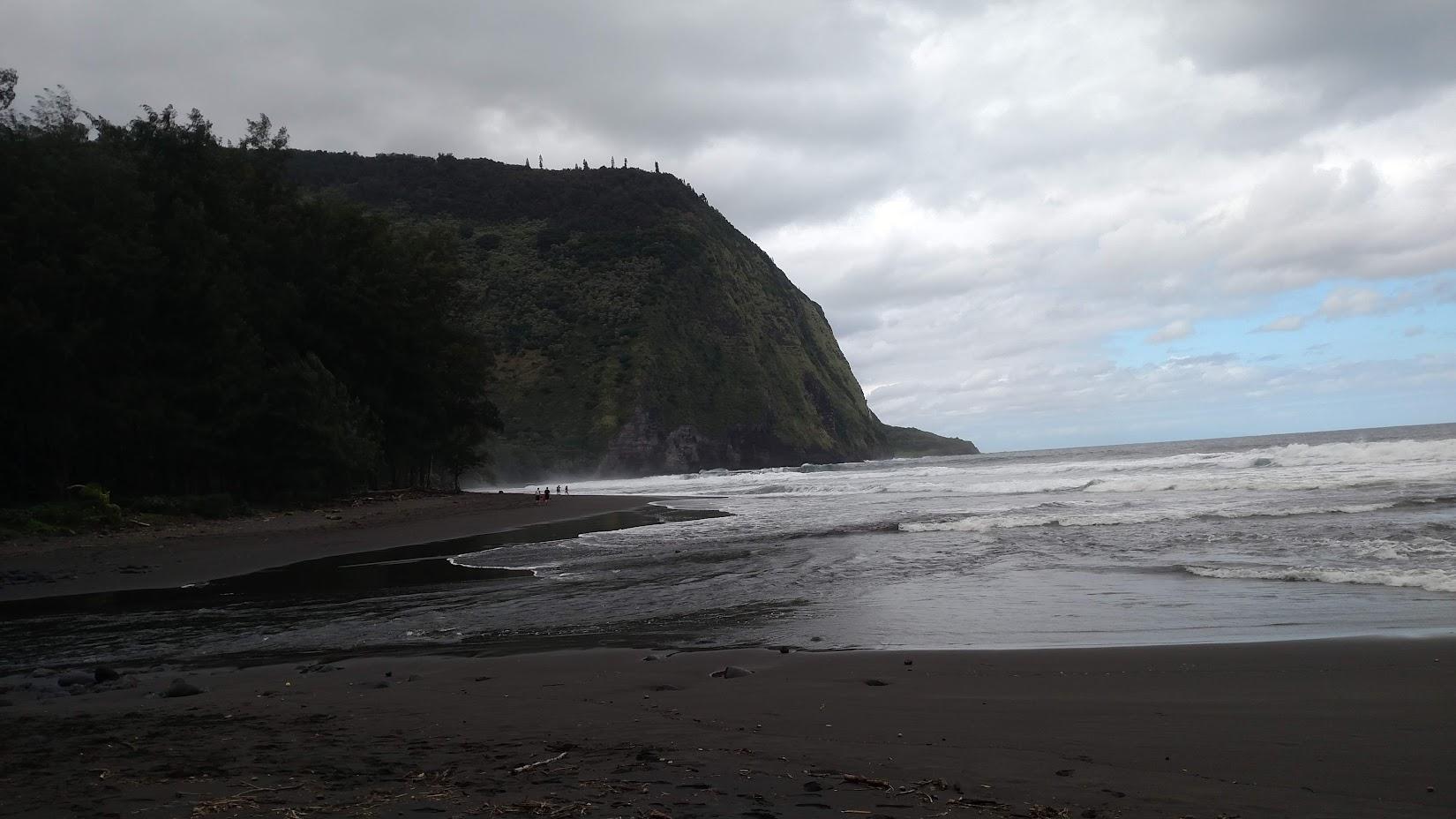 Очередные следы на песке или путешествие на Гавайи с детьми в декабре