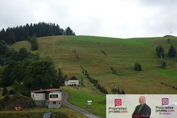 chalet à La Bresse (88)