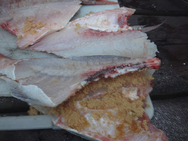 seafood, fish, Smoked Snapper, brown sugar, New Zealand, Aotearoa, Kai, Hot Girls Cooking, New Zealand (NZ) Cooking, Cooking for real, 新西兰烹饪,配有照片的食谱教程